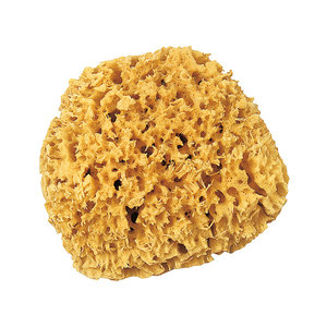 Nature sponge ca 14cm
